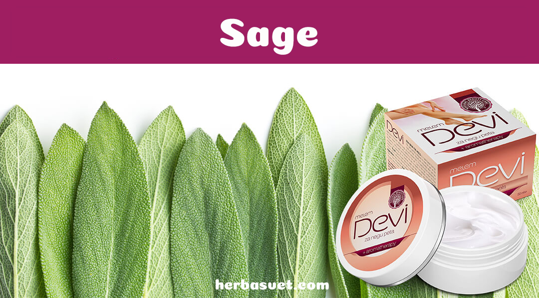 Sage leaves and Devi balm for heels